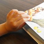子供用図鑑の作り方について!
